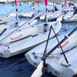 Laser little sailboats row in Formentera - Stock Photo