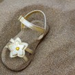 Golden star sandal buried in summer beach sand — Stock Photo