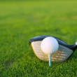 Golf tee ball club driver in green grass course — Stock Photo