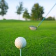 Golf tee ball club driver in green grass course — Stock Photo #5506246