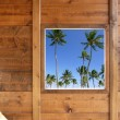 Tropical palm trees view from wooden window — Foto de Stock