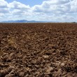 Plough plowed brown clay field blue sky horizon — Stock Photo