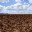 Plough plowed brown clay field blue sky horizon - Stock Photo