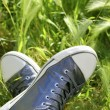 Relaxed silver shoes having rest meadow field — Stock Photo #5507424