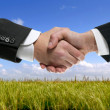 Businessman partners shaking hands in nature — Stock Photo