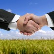 Businessman partners shaking hands in nature — Stock Photo #5507693