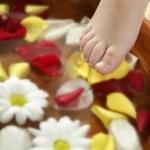 Aromatherapy, flowers feet bath, rose petal — Stock Photo #5507694