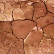 Stock Photo: Clay dried red soil cracked texture background