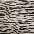Imitation zebra leather texture background - Foto Stock