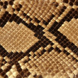 Background snake skin pattern brown — Stock Photo