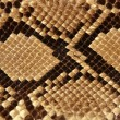 Stock Photo: Background snake skin pattern brown