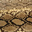 Background snake skin pattern brown - Stock Photo