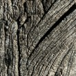 Aged gray wood macro texture for background — ストック写真
