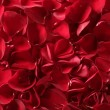 Photo: Red rose petals texture background