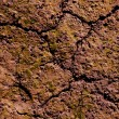 Dried cracked red clay natural soil — Stock Photo