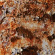 Rusty steel texture, rusted metal surfaces — Stock Photo