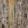 Aged old wood texture, ancient wooden door — Foto Stock