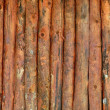 Vertical wood trunks wall texture — Stock Photo