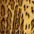 Jaguar leopard fantasy fabric fur texture — Stock Photo