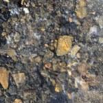 Iced stones soil in winter translucent ice — Stock Photo