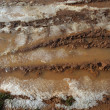 Ice on mud red clay soil road with tyres lines — ストック写真