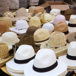 Varied fashion hats showcase shop — Stok Fotoğraf #5508593