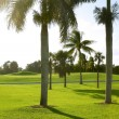 Miami Key Biscayne Golf tropical field — Stock Photo #5509280