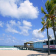 Fort Lauderdale beach cafe with tropical palm trees - Stock Photo