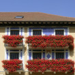 Beautiful house in Navarra with flowers on balcony — Stock Photo
