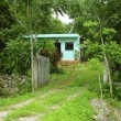 Green jungle little house in Mayan riviera Mexico — Stock Photo #5509917