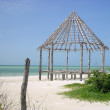 Hut palapa construction wood structure Holbox — Stock Photo