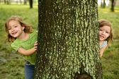 Two twin little girls playing in tree trunk — Stockfoto