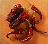 Red dried hot chili peppers — Stock Photo