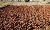 Plowed field in red clay, spain — Stock Photo