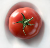 One simple red tomato in a white dish — Stok fotoğraf