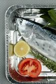 Little tunny, tuna, alby, albacore, silver color. — Stock Photo