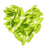 Basil mint leaves heart shape isolated on white — Stock Photo