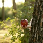 Fantasy girl holding a red apple in the forest — Stock Photo