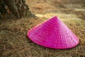 Chinesse pink girl hat over the forest floor — Stock Photo