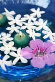 Jasmine, and pink Asarina, candles and blue water — Stock Photo
