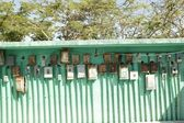 Electricity meter wall in mexico outdoor green — Stockfoto
