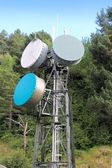 Communication tower antenna in outdoor forest — Stock Photo