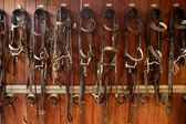 Horse riders complements, rigs, reins, leather over wood — Stock Photo