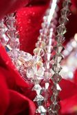 Shiny jewelry over red rose petals — Stockfoto