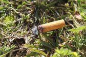 Cigarette fire hazard on forest grass macro detail — Stock Photo
