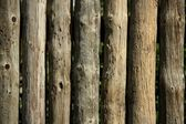 Wood natural striped trunks wall, fence, traditional wood architecture — Stock Photo