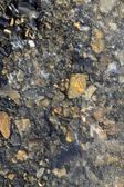 Iced stones soil in winter translucent ice — Stock Photo