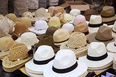 Varied fashion hats showcase shop — Stock Photo