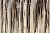 Stick white wood trunk fence tropical Mayan wall — Stock Photo