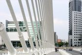 City scape urban bridge scene in Valencia — Stock Photo